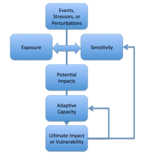 Figure 1 - Vulnerability as a Funtion of E, S, and AC final